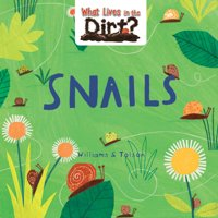 What Lives in the Dirt?: Snails (Paperback)