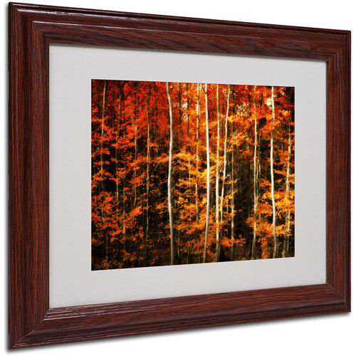 "Trademark Fine Art ""Still Painting"" Canvas Art by Philippe Sainte-Laudy, Wood Frame"
