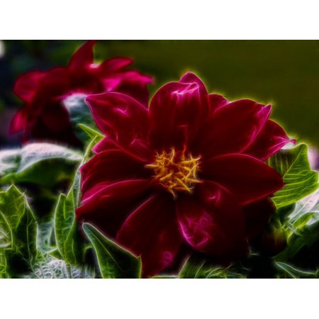LAMINATED POSTER Red Fractal Digital Art Flower Shiny Fragile Poster Print 24 x 36