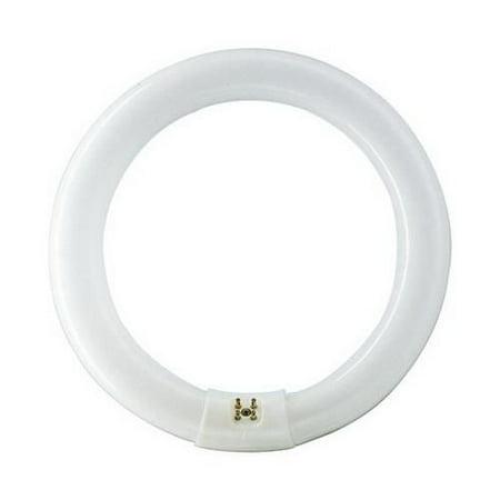 Philips Lighting 391169 C-T9 Circline Fluorescent Lamp 20.5 Watt G10q Base 1050 Lumens 62 CRI 4100K 8 Inch Length Cool White Alto -