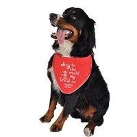 ruff ruff and meow doggie bandana, joy to the world, red, small