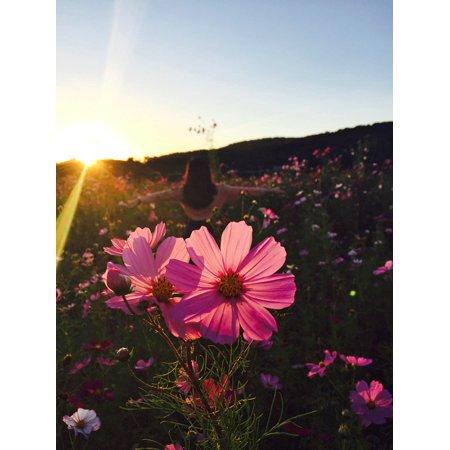 LAMINATED POSTER Flora Meadow Wildflower Joy Pink Girl Blossom Poster Print 24 x - Wildflower Girls