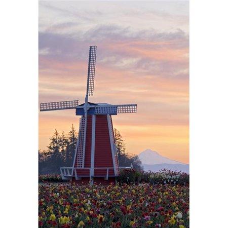 Posterazzi DPI1840397LARGE Sunrise Over Wooden Shoe Tulip Farm & Mt. Hood - Woodburn Oregon USA Poster Print, Large - 24 x (Map Of Woodburn Oregon)