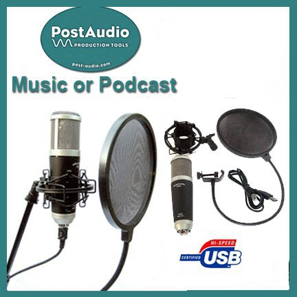 Post Audio Professional Recording or Podcast Setup USB Condenser Mic with Shock Mount and Cable Plus Free Pop Filter