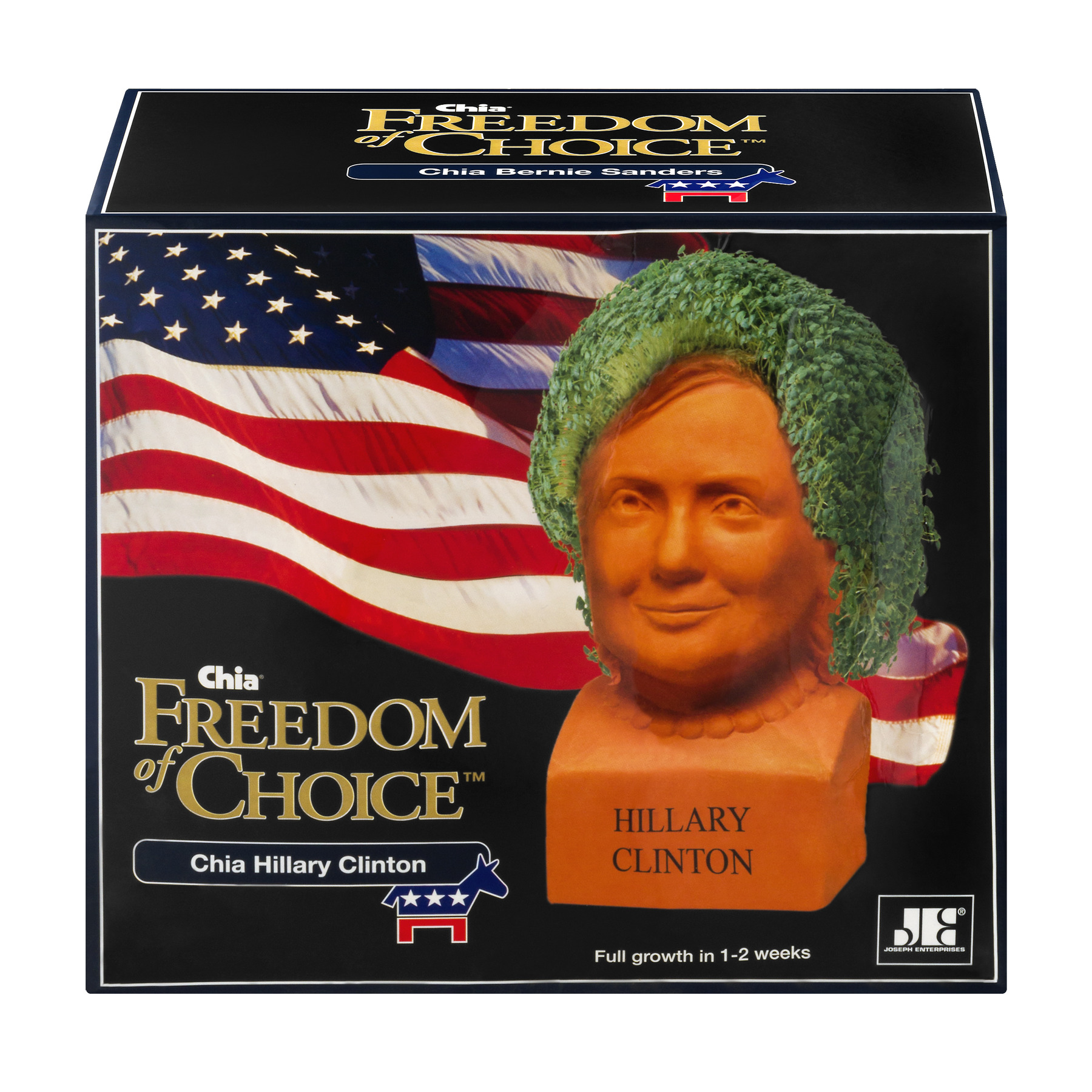 As Seen on TV Chia Pet, Hillary Clinton