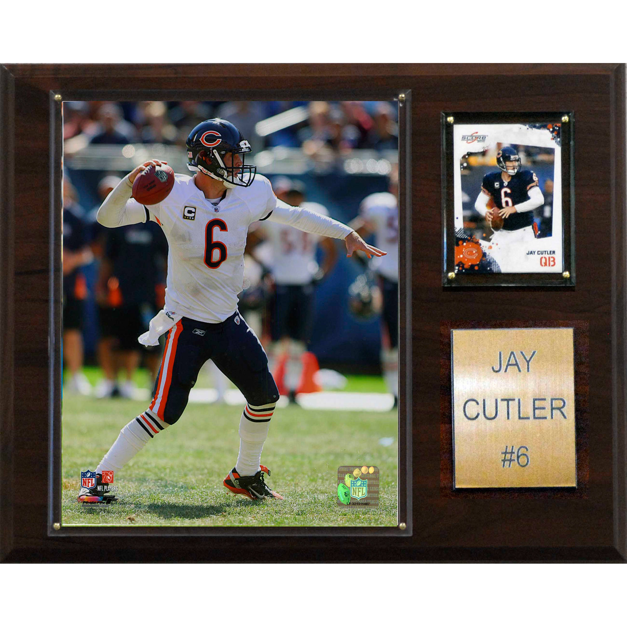C&I Collectables NFL 12x15 Jay Cutler Chicago Bears Player Plaque