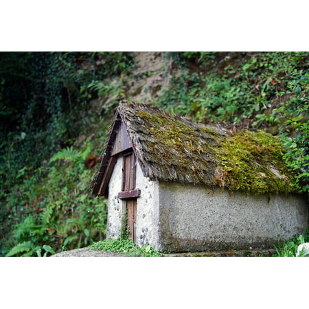 Moss Cottage - Canvas Print Farmhouse Cottage Model Moss Region Stretched Canvas 10 x 14
