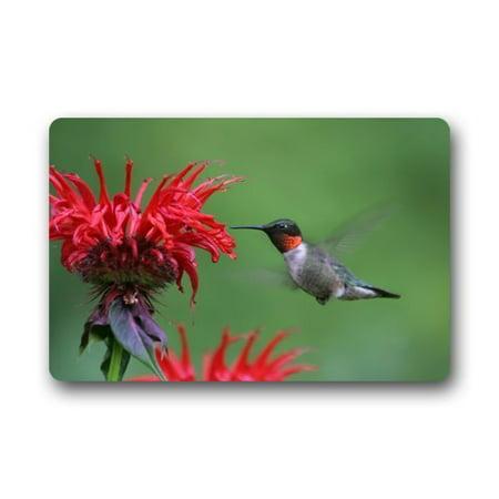 - WinHome Hummingbird with Flower Doormat Floor Mats Rugs Outdoors/Indoor Doormat Size 30x18 inches