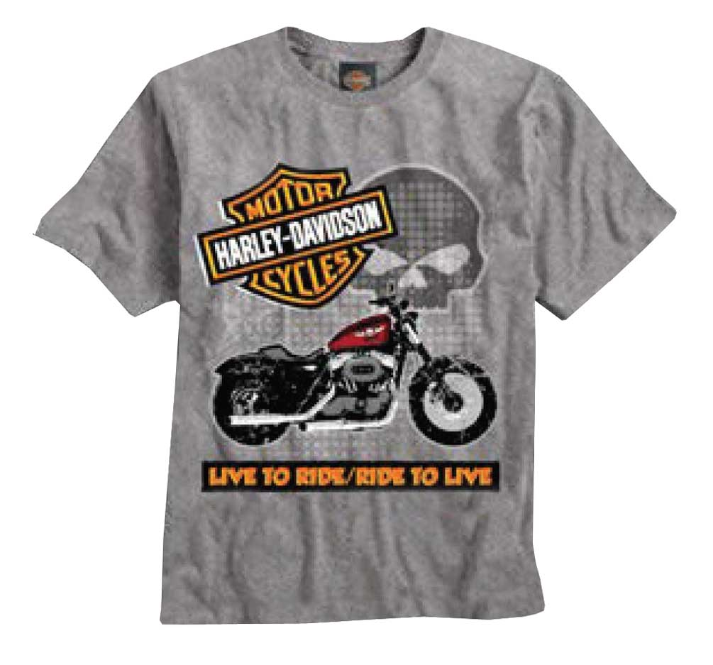 Harley-Davidson Little Boys' Tee, Short Sleeve Ride To Live, Gray 0484226