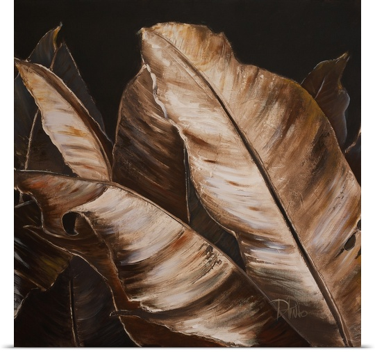 Great BIG Canvas | Rolled Patricia Pinto Poster Print entitled Through the Sepia Leaves II