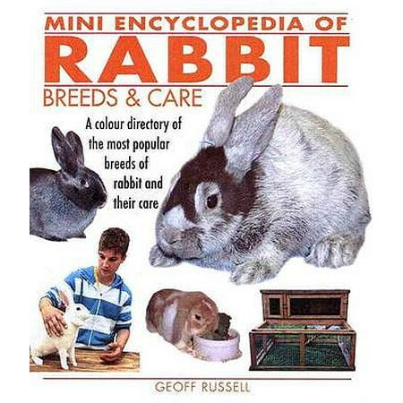 Mini Encyclopedia of Rabbit Breeds & Care. Geoff (Russell Hazel Mini)