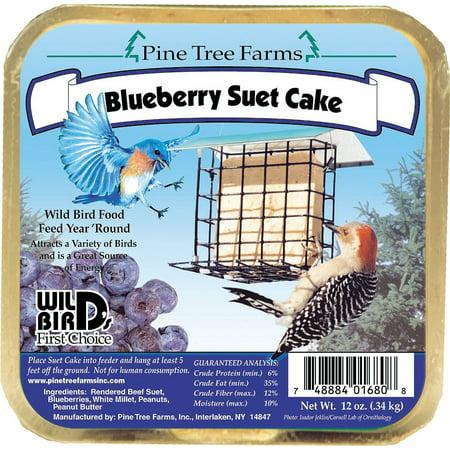 Pine Tree Farms Blueberry Suet Cake Bird Food