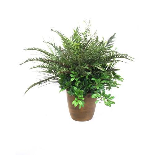 Dalmarko Designs Mixed Greenery Floor Plant in Planter