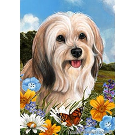 Tibetan Terrier Cream - Best of Breed  Summer Flowers Garden
