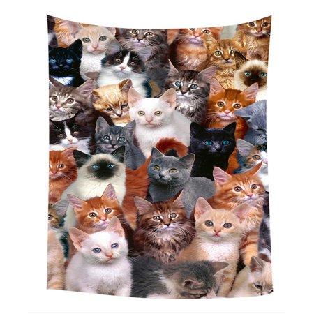 GCKG Cats Background Bedroom Living Room Art Wall Hanging Tapestry Size 40x60 inches - image 2 of 2