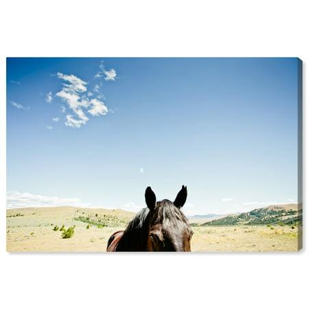 Oliver Gal \'Cassandra Eldridge - Chase Horse\' | Horses and ...