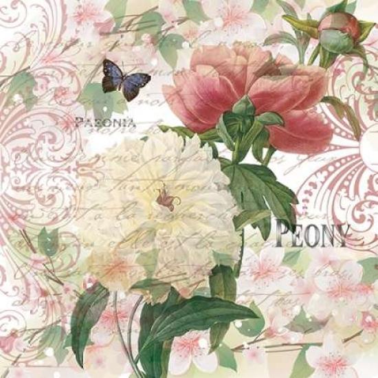 Vintage Peonies Poster Print by Denise Urban