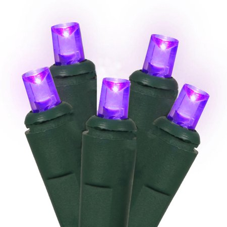 Northlight 60ct LED Wide Angle String Lights Purple - 19.6' Green Wire