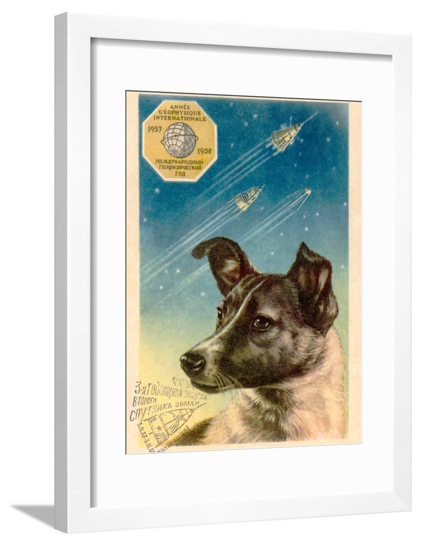 nursery postcard vintage colored postcard Nursery decor postcard collectible postcard nursery dog postcard dog fisherman postcard