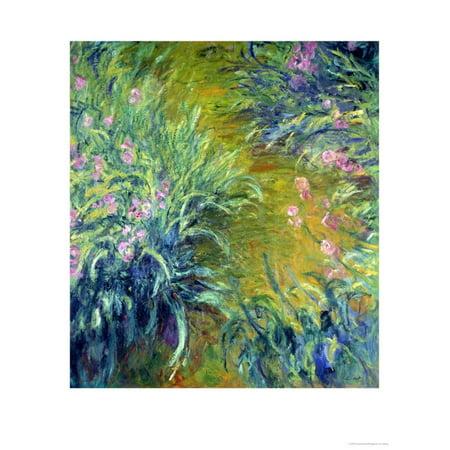 - Iris Flower Floral Garden Impressionism Print Wall Art By Claude Monet