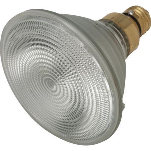 Halogen Bulb Philips 39W Par38 Sp10 Energy Saving