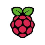 Adafruit Raspberry Pi Sticker