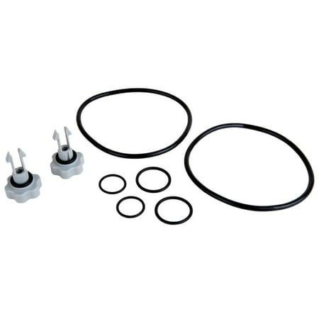 Intex 25004 2,500 GPH and Below Pool Filter Pump Replacement Seals Pack -