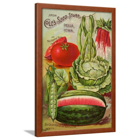 1896 Art - Seed Catalog Captions (2012): Cole's Seed Store, Pella, Iowa, Garden, Farm and Flower Seeds, 1896 Framed Print Wall Art