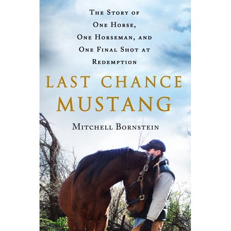 Spanish Mustangs Horses (Last Chance Mustang : The Story of One Horse, One Horseman, and One Final Shot at)