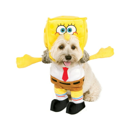 Spongebob Squarepants Halloween Special (Spongebob Squarepants Pet Dog Cat Walking Halloween)