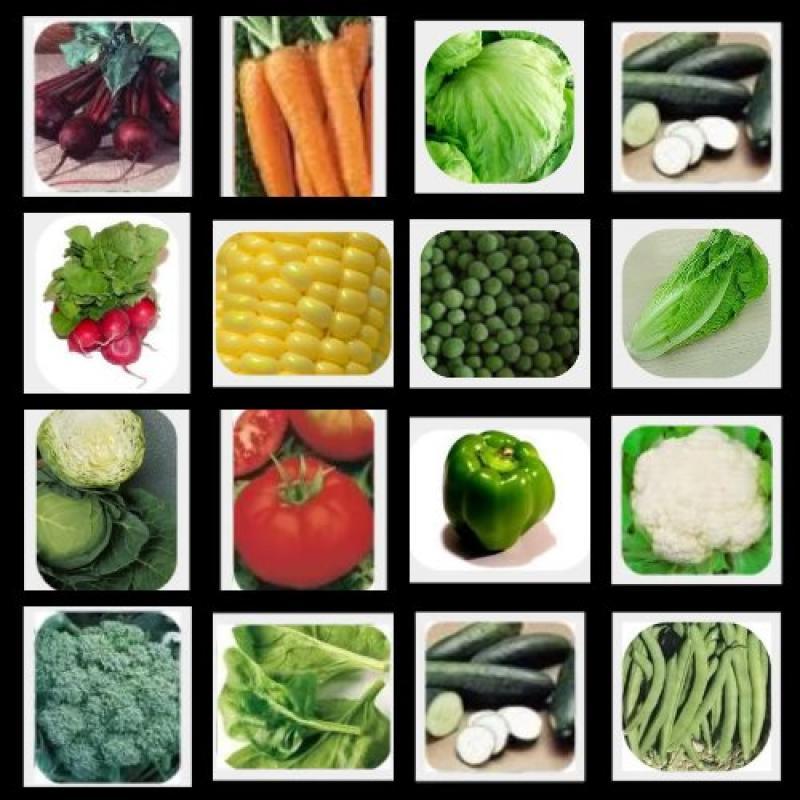 Heirloom Vegetable Seed Bank - Non GMO - Non Hybrid - Pac...