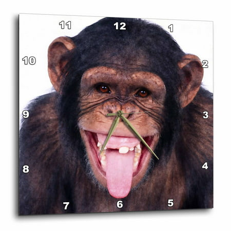 3dRose Laughing Monkey, Wall Clock, 13 by 13-inch