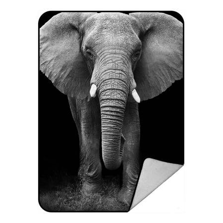 African Blanket (YKCG African Animal Elephant Blanket Crystal Velvet Front and Lambswool Sherpa Fleece Back Throw Blanket)