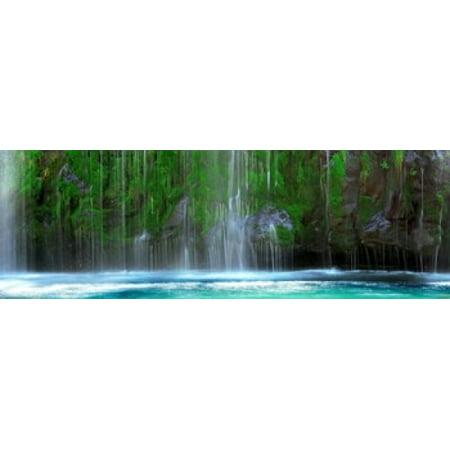 Waterfall in a forest Mossbrae Falls Sacramento River Dunsmuir Siskiyou County California USA Poster (Malls In Sacramento)