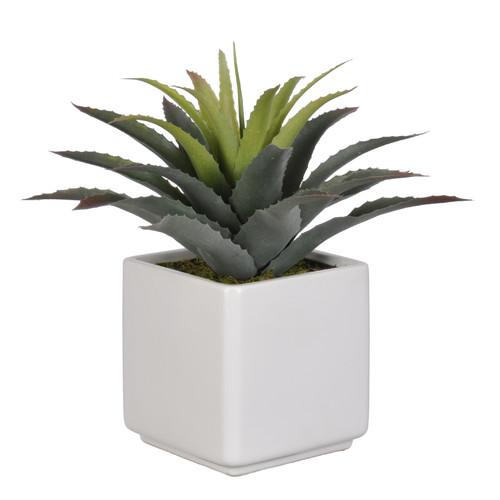 House of Silk Flowers Inc. Artificial Star Succulent Desk Top Plant in Pot