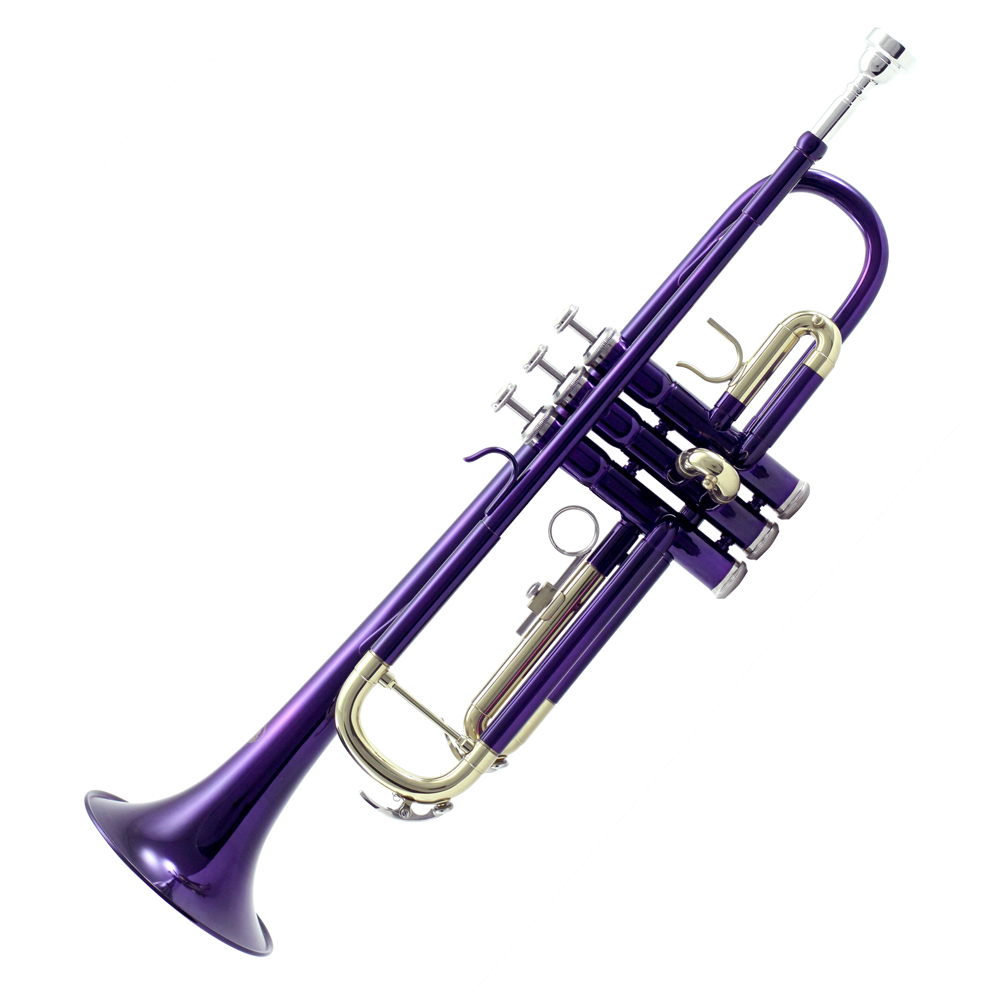 Sky Orchid Purple Lacquer Brass Bb Trumpet with Case, Cloth, Gloves and Valve Oil Complete... by