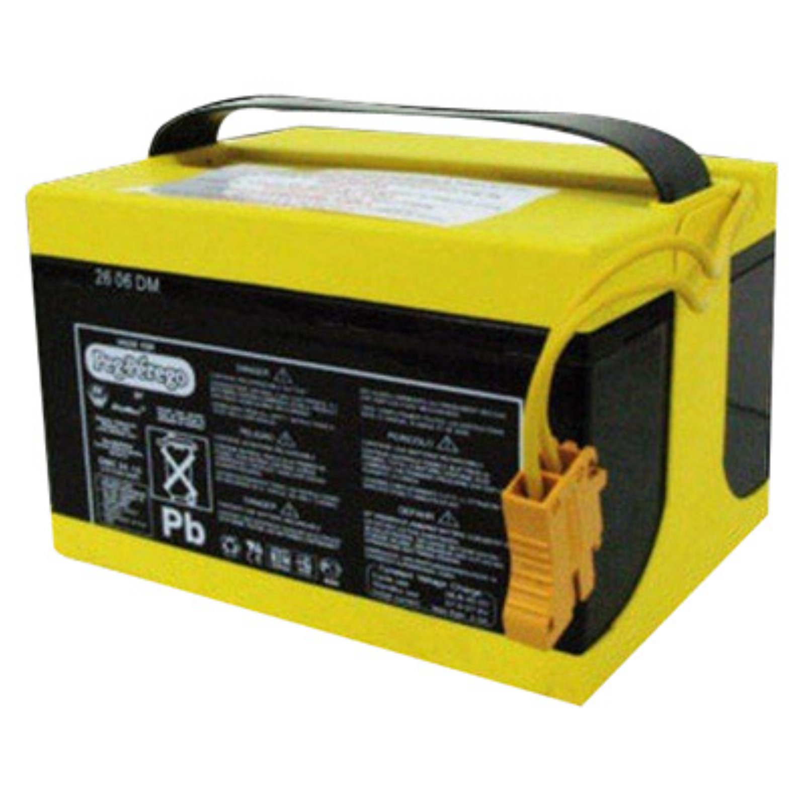 Peg Perego 24 Volt Rechargeable Battery