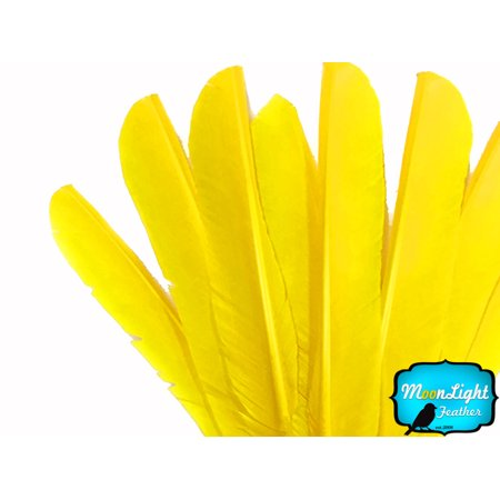 6 Pieces - Yellow Turkey Pointers Primary Wing Quill Large Feathers
