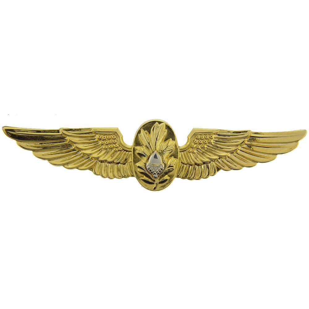 U.S. Navy Flight Surgeon Pin 2 3/4