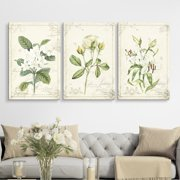 """wall26 3 Panel Canvas Wall Art - Vintage Style White Flowers - Giclee Print Gallery Wrap Modern Home Decor Ready to Hang - 16""""x24"""" x 3 Panels"""