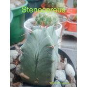 Stenocereus - eBook