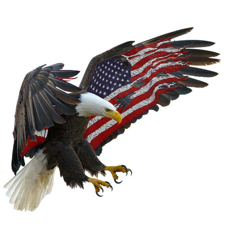 Eagle Flag Decal (American Eagle American Flag RV Trailer Graphics Decal 48
