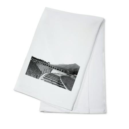 Bonneville Dam, Oregon - View of a Fish Ladder (100% Cotton Kitchen Towel)
