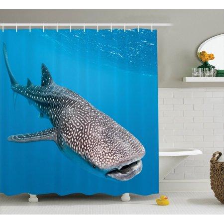 Sea Animals Decor Shower Curtain Set, Whale Shark Swimming Predators Hunter Clear Water Under The