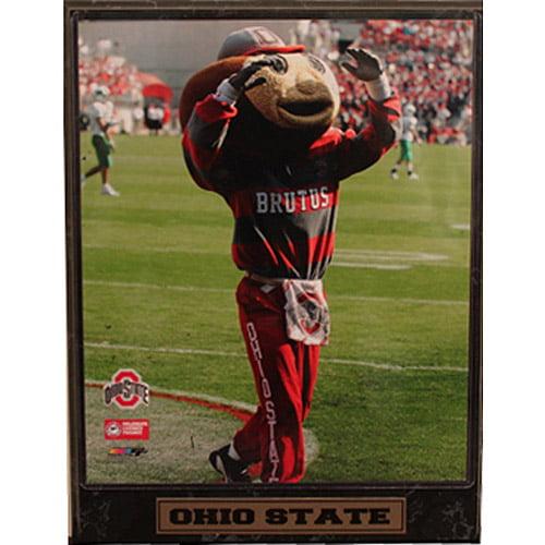 NCAA Ohio State Photo Plaque, 9x12