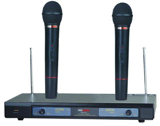 Gem Sound GMW61 Dual Wireless Microphone EF by Gem Sound Corp