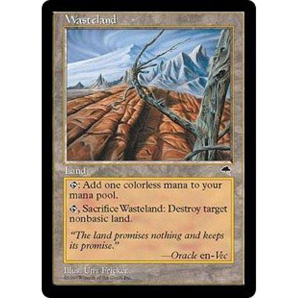 Wizards Of The Coast magic: the gathering - wasteland - t...