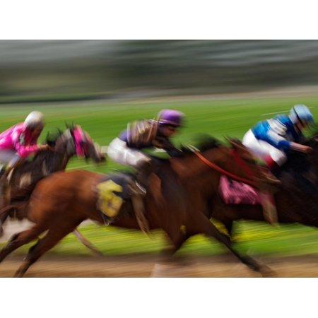 Thoroughbred Horses Racing at Keeneland Race Track, Lexington, Kentucky, USA Print Wall Art By Adam