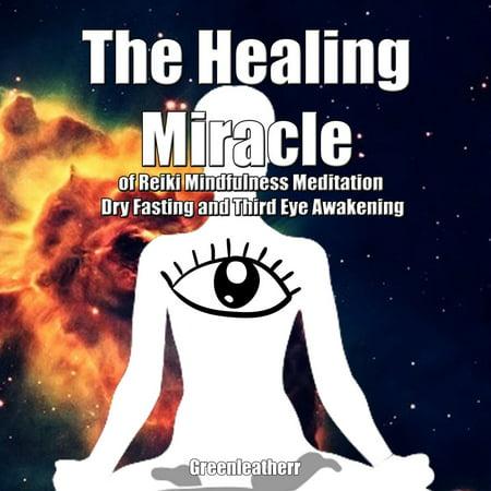 Healing Miracle of Reiki, Mindfulness Meditation, Dry Fasting and Third Eye Awakening, The -