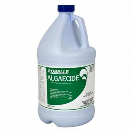 Robelle 1 gallon algaecide for swimming pools for Using algaecide in swimming pool